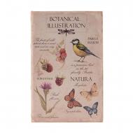 Cofre com ilustração de tipo de livro botânico